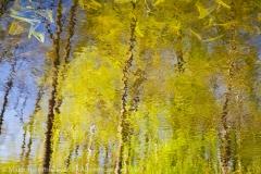 The Spring, Wiosna,