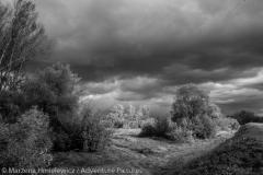 Poldery nad Wisla